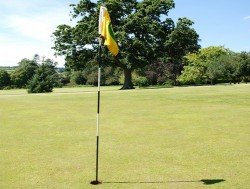 Weekday Golf Round - Single